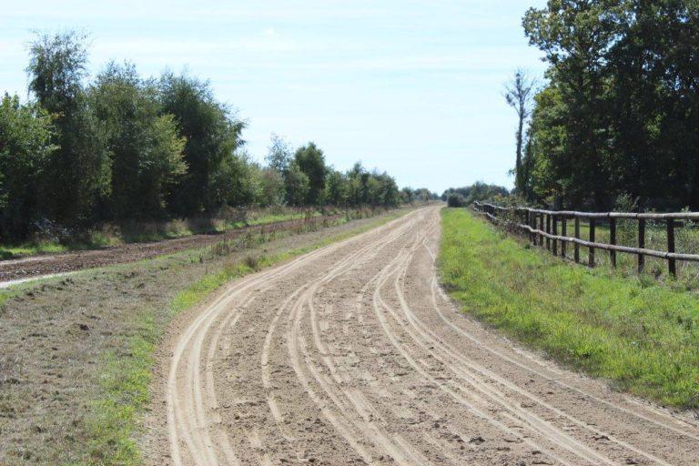 147453A2 A4D3 4D2A AB47 F81C5A0D8370 Professional Equestrian Property