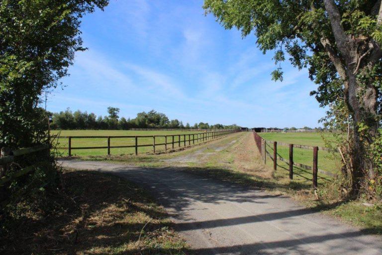 8D98B41E 8C9E 4852 B80F 3902A84798EC Professional Equestrian Property