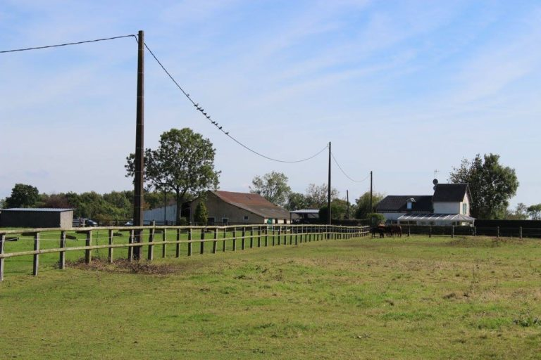 9CDD2CDE E034 4880 90F2 1EDDCD920E56 Professional Equestrian Property