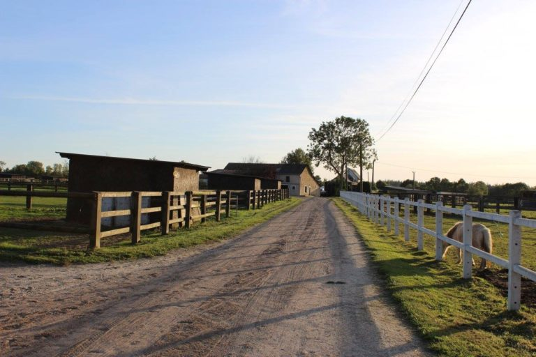 B89C0270 7D0C 4828 9F8E 4855C4FCCAB1 Professional Equestrian Property