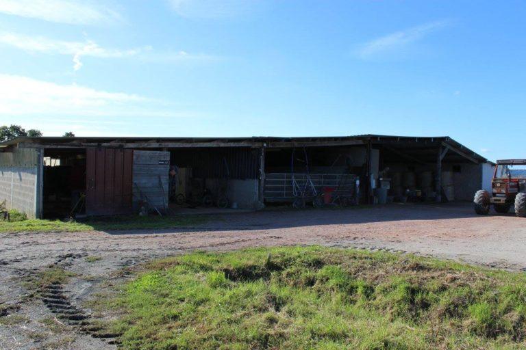CFF87621 0342 40CD 8F4A 20CD96BA07AD Professional Equestrian Property