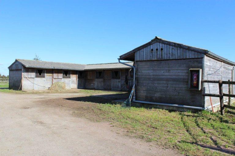 ED032692 E14F 4BDB 947C 0CF7E7B20A43 Professional Equestrian Property