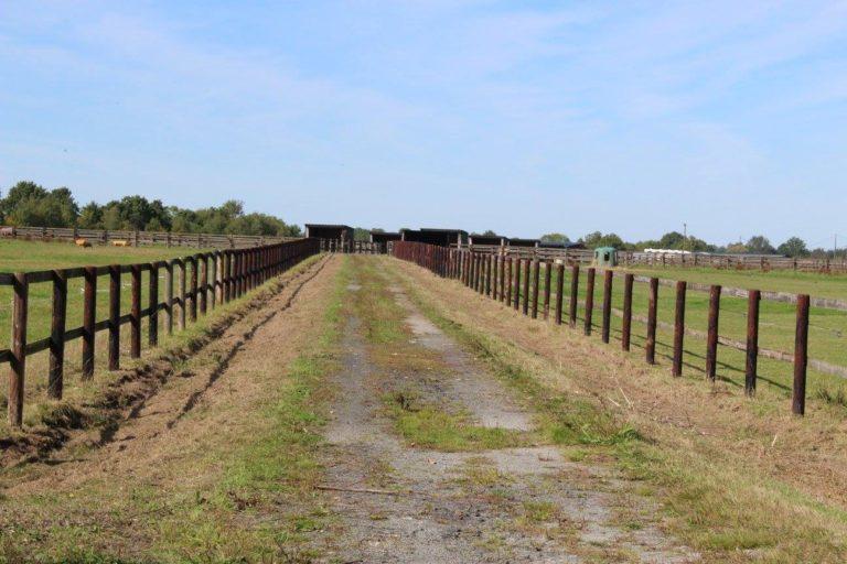 FB947F3E 0FDC 4686 BD31 D7A1CB1840DC Professional Equestrian Property