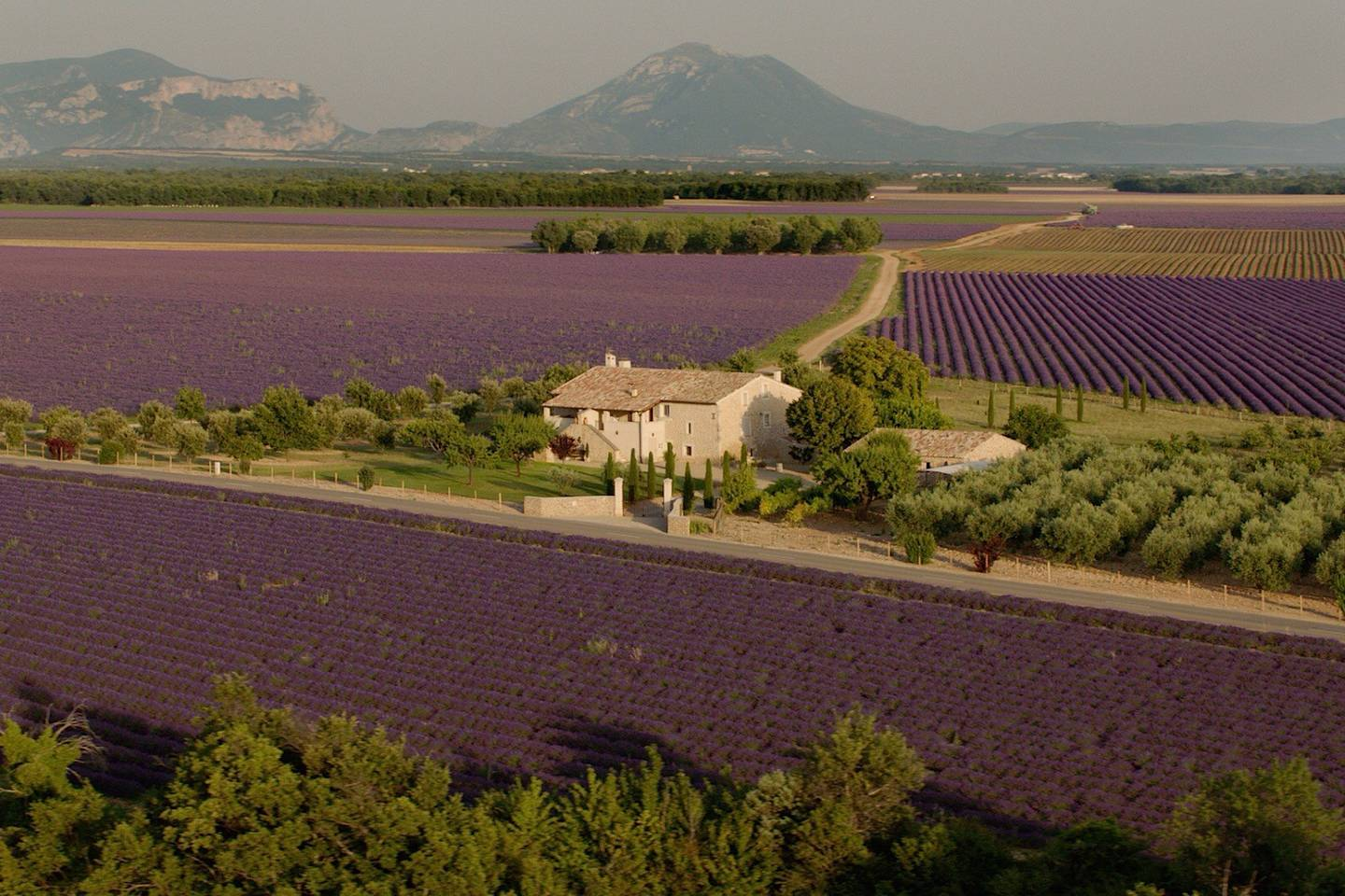 Beautiful in Provence