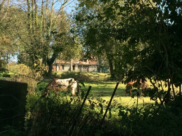 2014 10 01 19.27.04 Normandy colombage home
