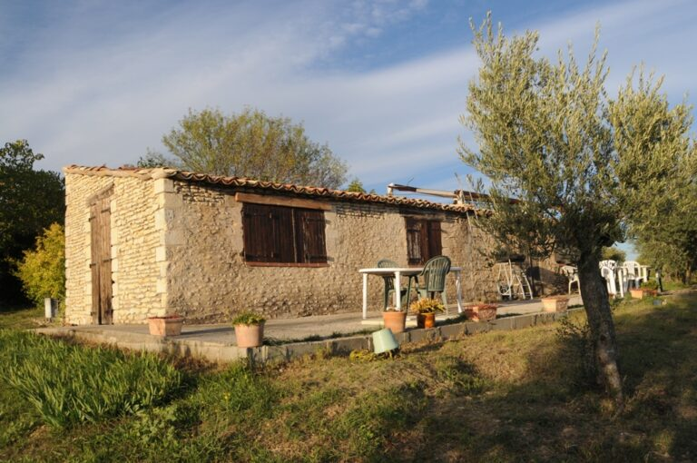 Photo 504 001 Olive farm in Provence