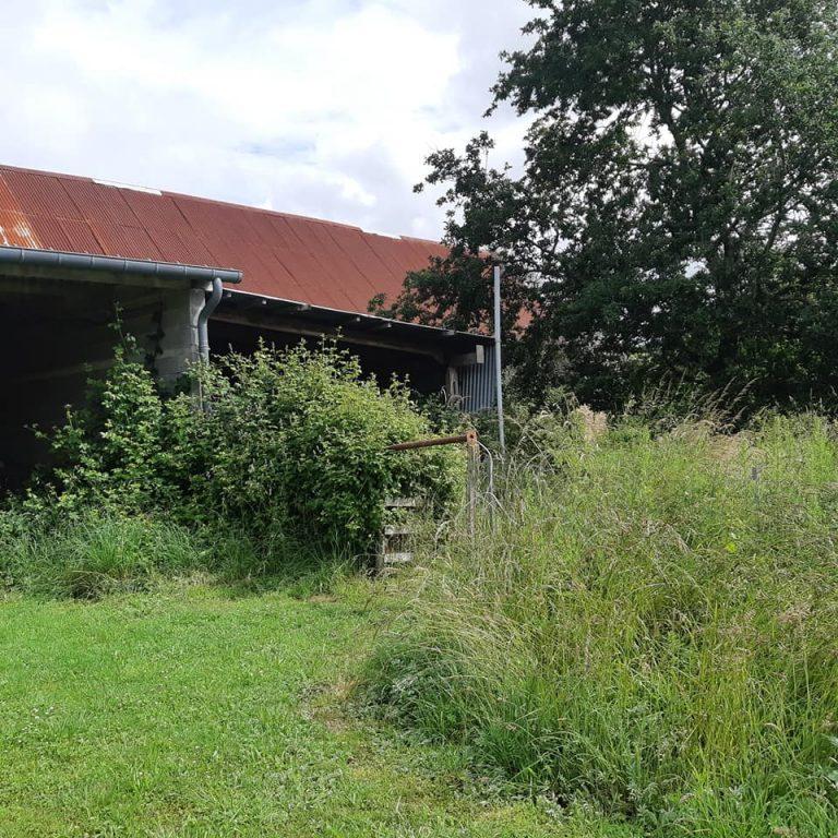205766898 10225675012453017 6046569635114182979 n substantial farmhouse